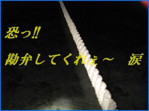1152 ロープ