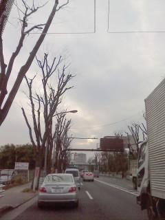 P2011_0115_155746.jpg