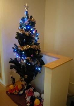 Christmas2009_4.jpg