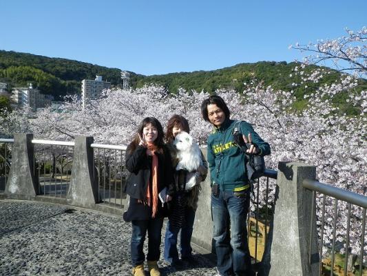 tateyama_park2