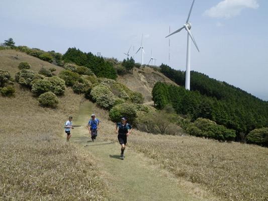 windfarm5
