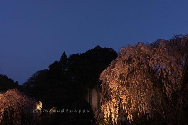 奈良・大野寺3