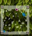 森2穴MAP