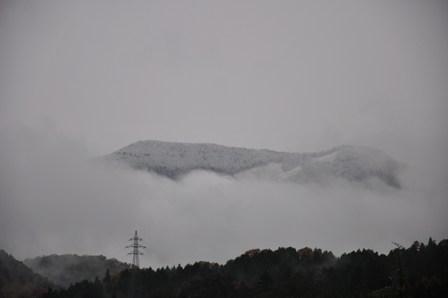 20091117asayuki.jpg