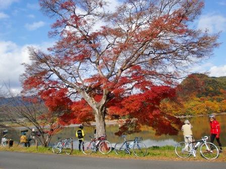 20091130hirosawa1.jpg
