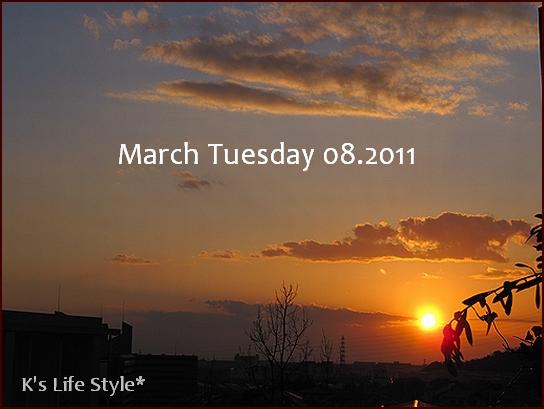 3月8日.jpg