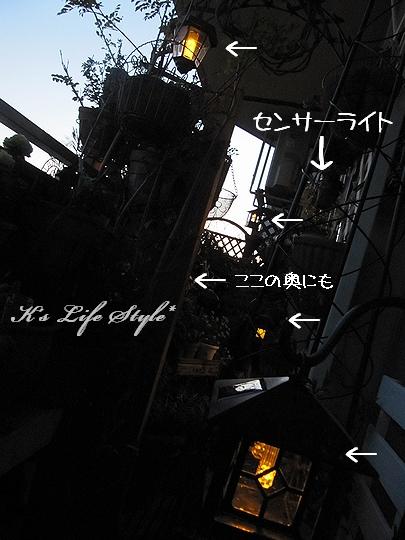 ライトいっぱい.jpg