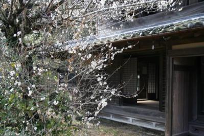 梅と古民家式台
