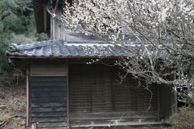 梅咲く古民家式台