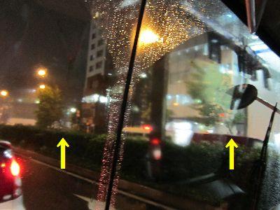 台風で倒れそうな街路樹プラタナス