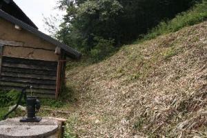古民家の裏山