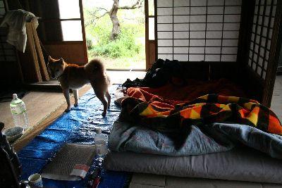 朝日の当たる古民家室内