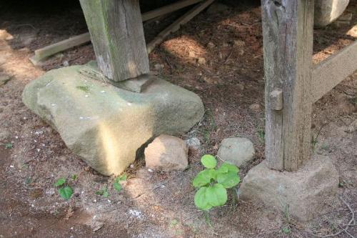 金井加里神社どこかの基礎