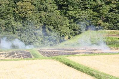 稲刈り後の野焼き