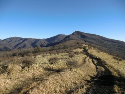 展望の丘から