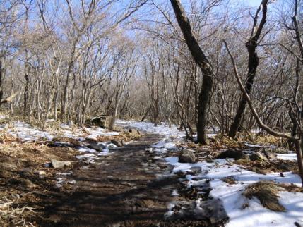雪融けで道はドロドロ