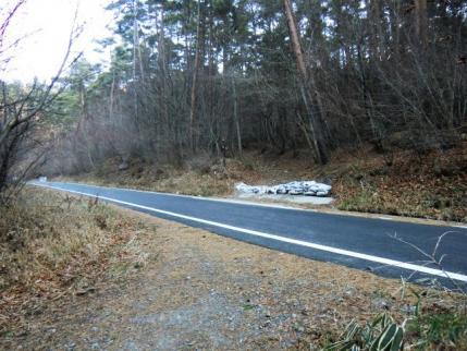 なんと立派な舗装林道を横切る
