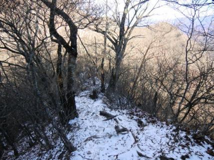 北斜面は雪が残る