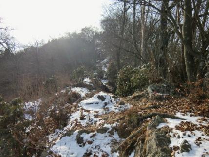 小持山への道