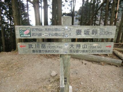 妻坂峠、武川岳まで50分・・・