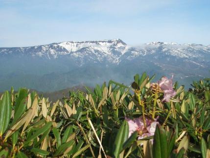 平標山への途中から苗場山