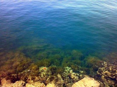 カマス漁港