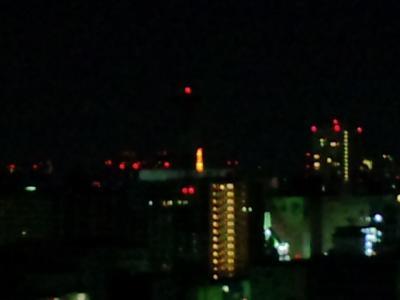 100127東京タワー