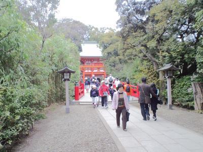 100328氷川神社