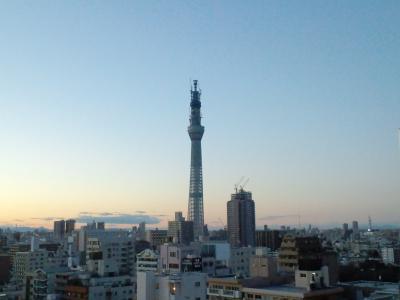 110102東京スカイツリー