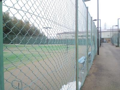 110212白井テニスクラブ