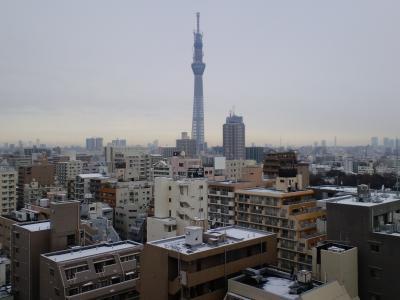 110215東京スカイツリー