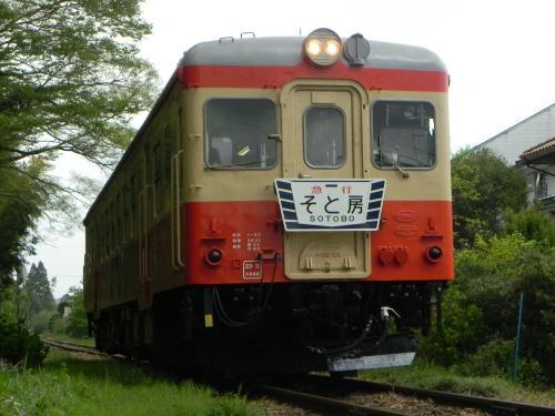 DSCN7555_convert_20110605213816.jpg