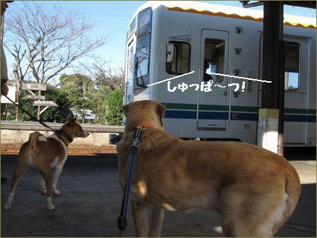 ここは宮口駅です。