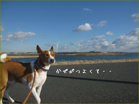 はなケン地方の風はすごいです。