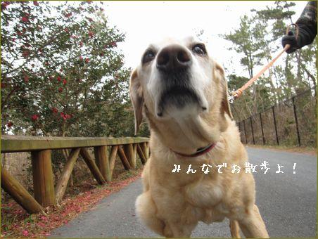 明日は神奈川に行ってきます。