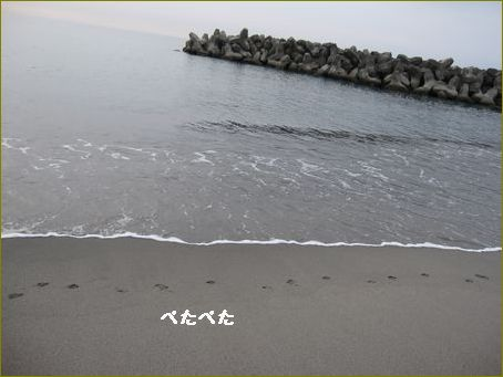 波が穏やかです。