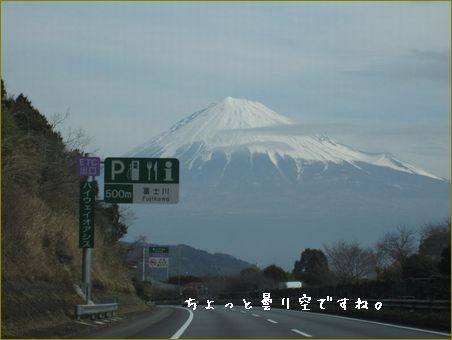 川崎の息子のところに行ってきました。