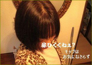 今の髪型よ。