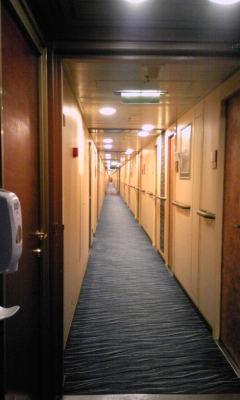 廊下mage848