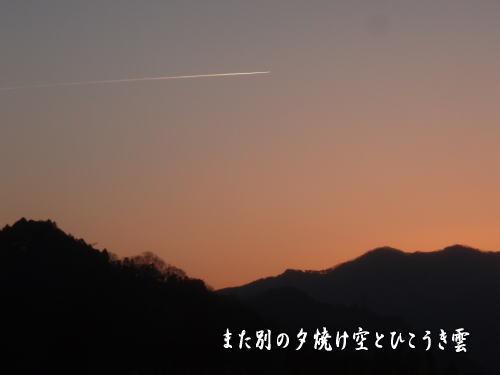 110413-7.jpg