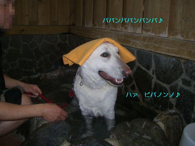 CIMG6877温泉