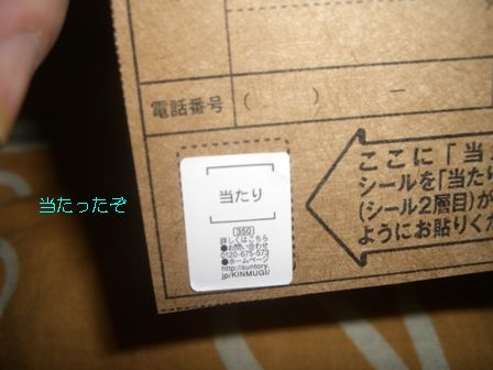 CIMG7373.jpg