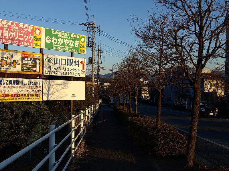 P1188433.jpg