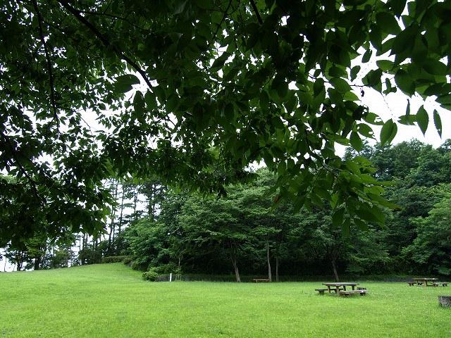 健康の森5