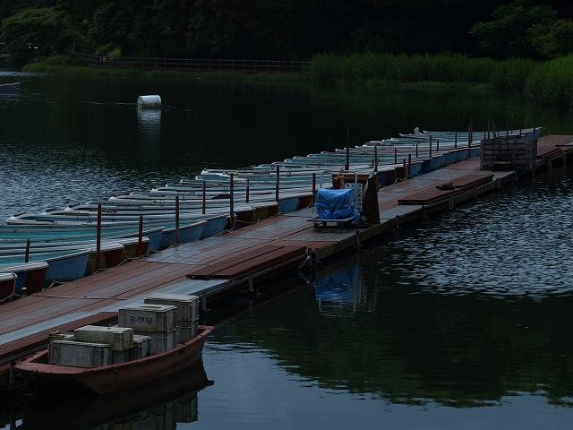 千代田湖3