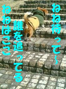 20110709_1.jpg