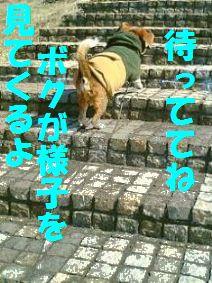 20110709_3.jpg