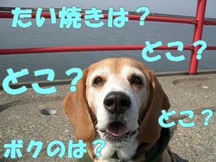 20111014_1.jpg