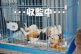 20111027_5.jpg