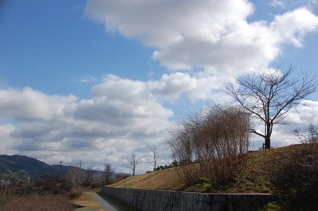 wind14.jpg
